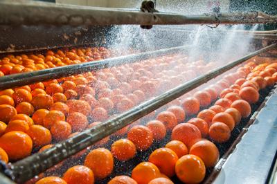 Rolamentos Setores Industriais (Alimentação) - TIMKEN